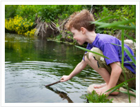 Child pond dipping